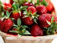 Erdbeeren und Schreiben